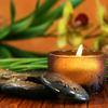Re∙gen∙e∙sis™ Integrative Health Centers | Colon Hydrotherapy Austin | Colon Cleanse Austin